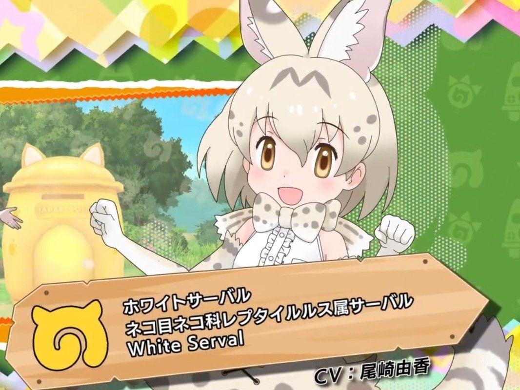 1周年「けものフレンズ3」新キャラ☆4『ホワイトサーバル』☆4フレンズチケプレも!