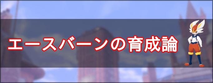 盾 論 バーン 育成 剣 ポケモン エース