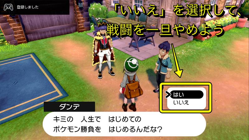 剣 ヒトカゲ 厳選 盾 ポケモン