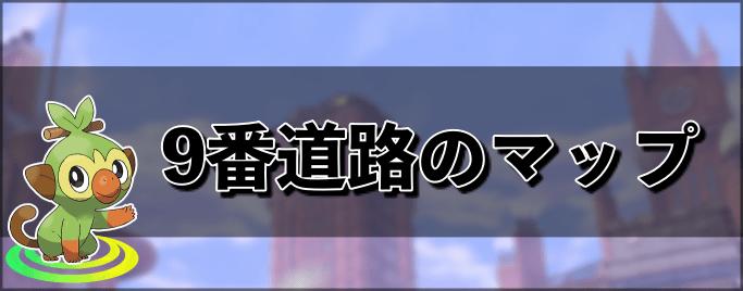 ポケモン剣盾 9番道路